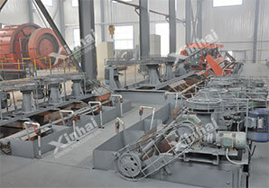 Xinhai процесс флотационного обогащения